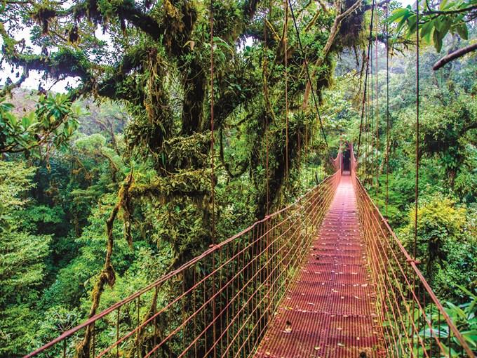 Voyage 224 La Carte Le Costa Rica Paradis Vert Costa Rica