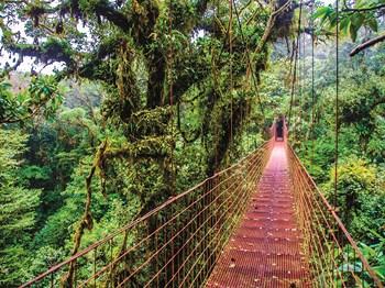 Voyage Entre Nous Le Costa Rica, paradis vert