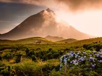 Voyage Entre Nous Les Açores en toute liberté
