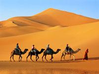 Voyage Entre Nous Désert et oasis en 4x4
